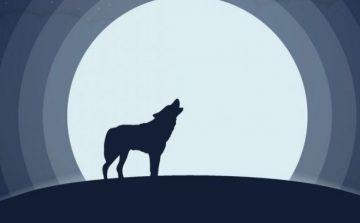full moon and  wolf